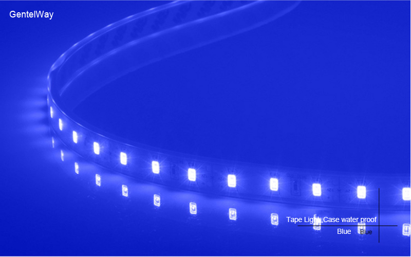 Fllexible Strip  led Light Case water proof-Blue