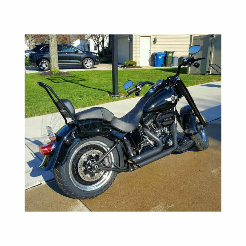 Detail Feedback Questions about Detachable Sissy Bar For