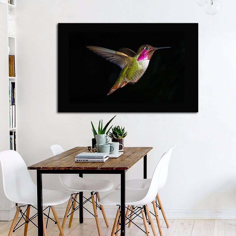 Animal Bird Close Up Colorful Hummingbird KD683 Living