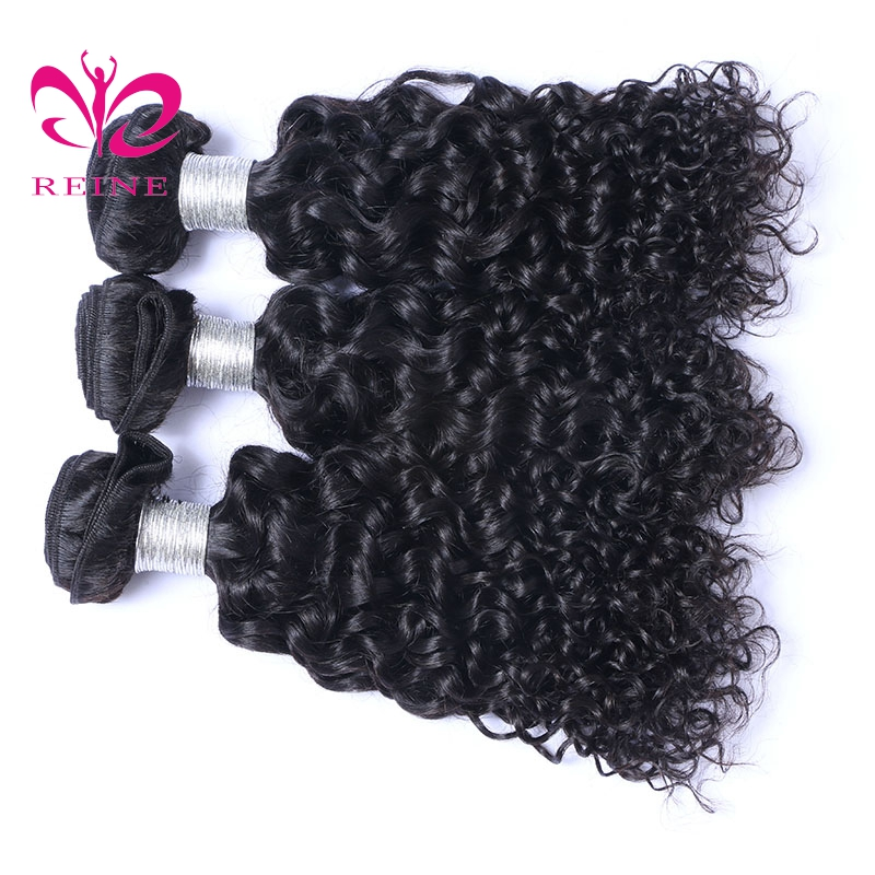 Reine Brazilian Water Wave Bundle Human Hair 3 Piece/Lot 100% Real Human Hair Weave Bundles Natural Color NONE REMY Extensions
