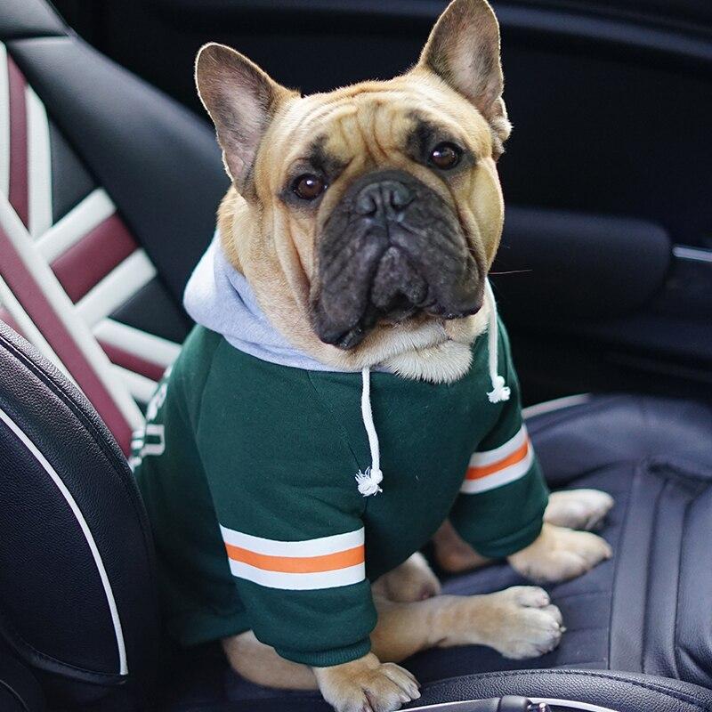 Одежда для собак, толстовки с капюшоном для маленьких собак, толстовка с капюшоном с милым французским бульдогом, классная футболка для Frenchie|sweatshirt sweatshirt|t-shirt coolt-shirt t-shirt | АлиЭкспресс - Тёплое для хвостатых