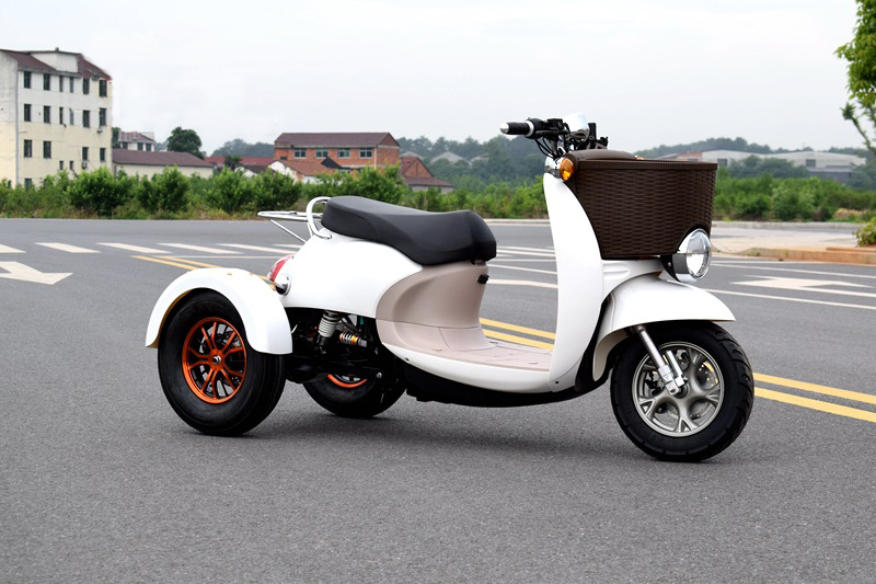 60V <font><b>1000W</b></font> Citycoco Electric <font><b>Scooter</b></font> Lead-acid Battery Three Rounds of Motorcycle Electric Motorcycles image