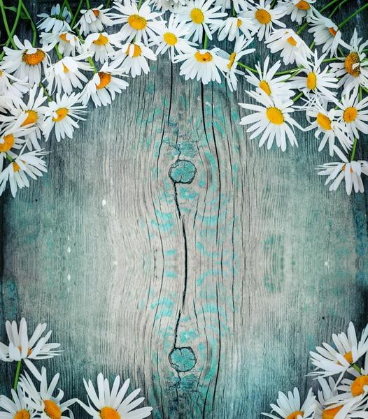 custom vinyl cloth daisy flowers wood wall photography