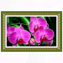 Square diamond mosaic painting diamond embroidery cross stitch Flower orchid - 5d diy full rhinestones beadwork sale 4435R