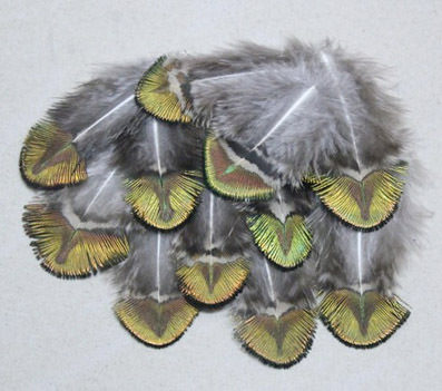 Hot! 100pcs/Lot 2-4 4-10cm Washed Gold Peacock Plumage Feathers Free shipping