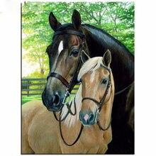 H1363 5D алмазная живопись полный дрель смолаы лошади, вышивка природа животные