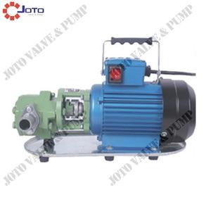 Image 3 - High Efficiency Gear Mini Oil Pump Cast Iron 750w 220V/50HZ