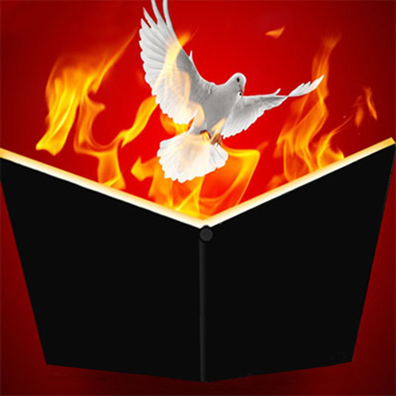 Fire Book Appearing Dove Magic Trick Comedy Stage Magic Objects Appearing From Flame Magia Book Magician Illusions Gimmick Props