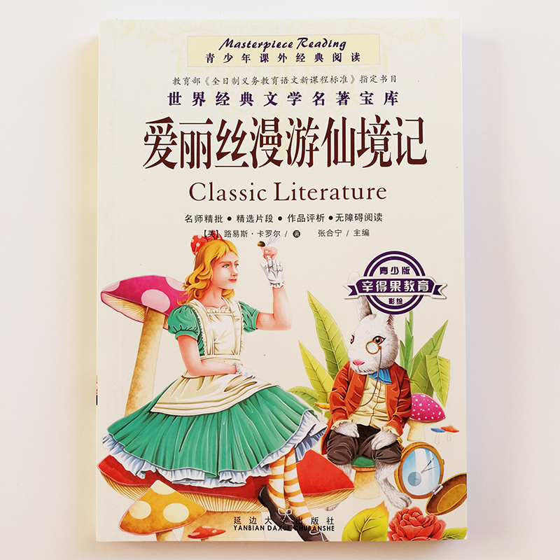 Alice In Wonderland &Through The Looking-Glass Chinese Books For Children/Teens /Middle School Students Simplified Chinese