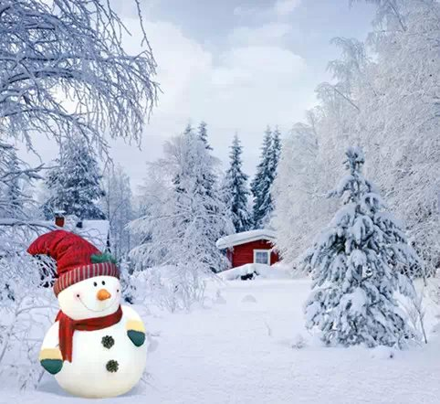 Real Snowflakes Falling Wallpaper 10x10ft Photography Background Christmas Nature Snow Vinyl