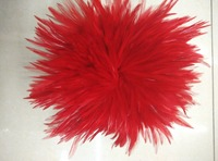 EMS Free Shipping 0.5KG Red Hackle Feather Trim 15 20cm 6 8 Rooster feather Trimming Cock Fringe For Costume Wholsale