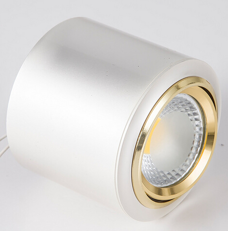 2016 Hot Dimmable10W/15W Surface Mounted COB LED Downlights Adjustable AC85 265V White/Warm White/Cool White Gold/Silver Color downlight led downlighterdownlight 30w - title=