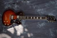 China firehawk guitar Electric guitar guitar flower vine inlays