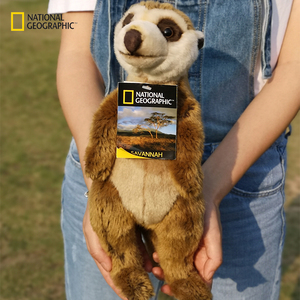 National Geographic 13