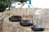 60x90mm Vintage Glass Dome Bell Jar With Dark Wooden Base Window Display Lab Use