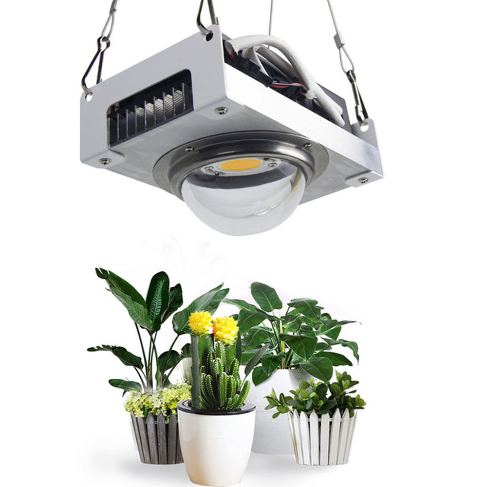 CREE CXB3590 COB LED Grow Light Full Spectrum 100W Citizen 1212 Plant Lamp for Indoor Tent Greenhouses Hydroponic