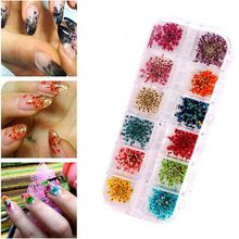 Fashion Trendy Charming Exquisite 12 Colors Real Nail Dried Flowers Nail Art Manicure Accessories for UV Gel Acrylic DIY Sticker