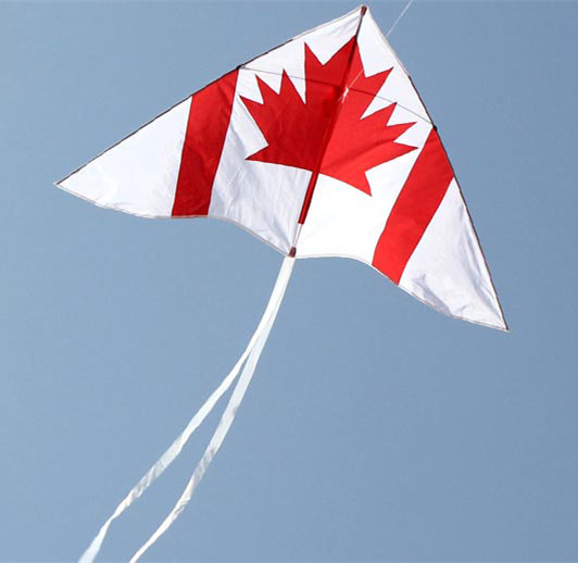Free Shipping Outdoor Fun Sports Canadian Flag Kite With Flying Tools Factory Direct