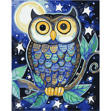 WEEN Owl animal-DIY Painting By Numbers Kit, Framed Paint on Canvas, Modern Wall Art Picture, Acrylic 40x50CM