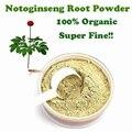 100 г/лот 100% Подлинным Notoginseng root powder extracts тончайший псевдо женьшень китайские травы Вэньшань SANQI для красоты