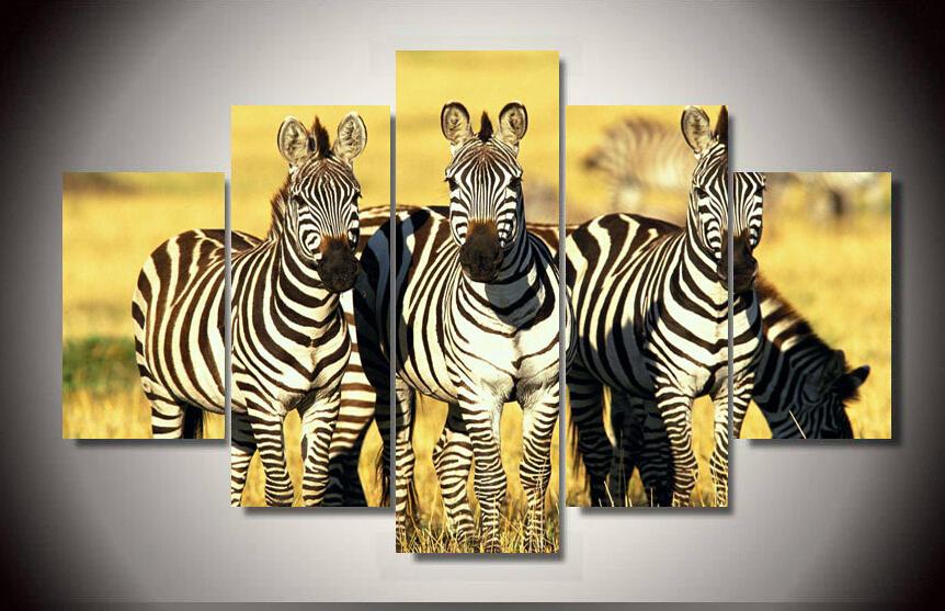Online Get Cheap 5 Picture Zebra -Aliexpress.com | Alibaba Group