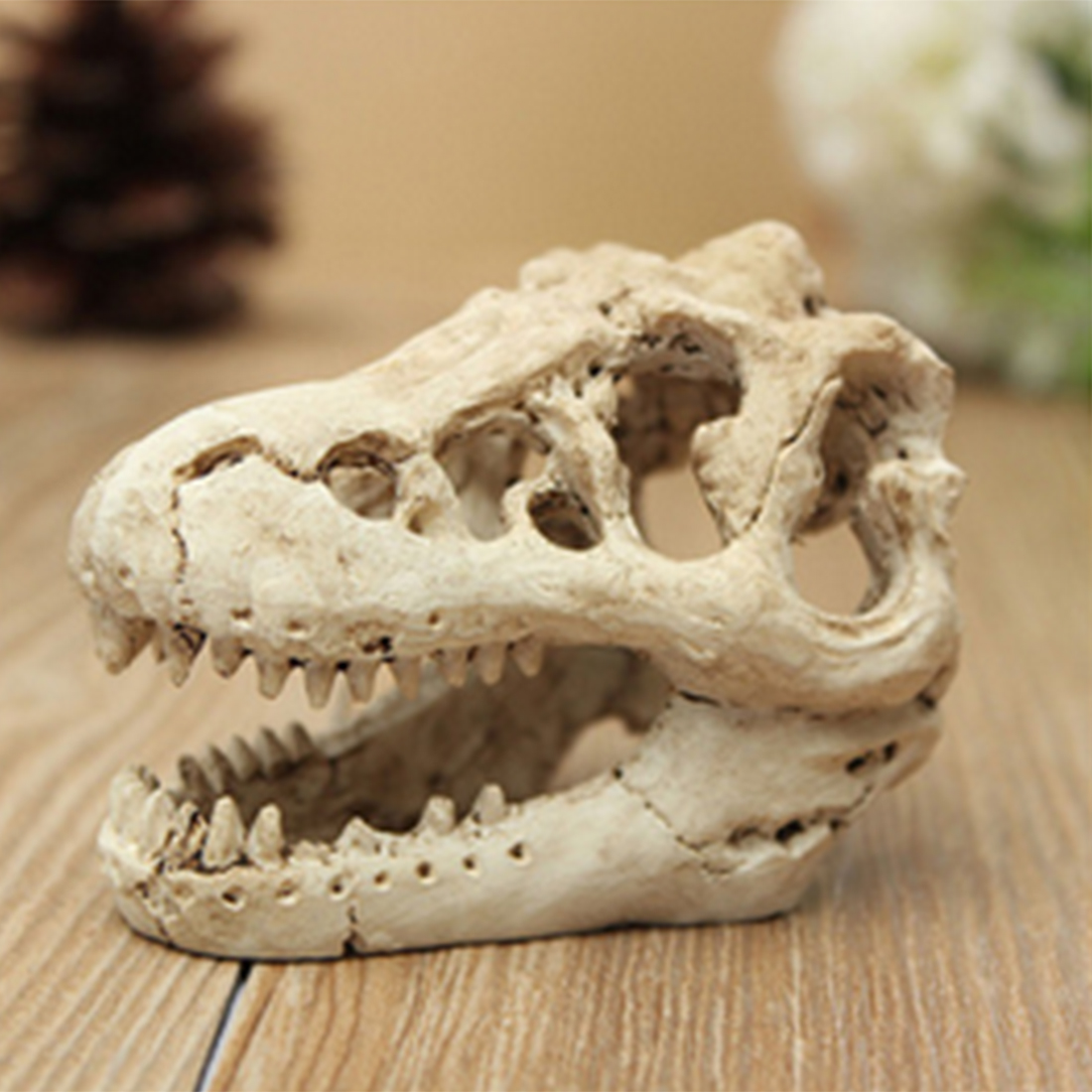 US $3.25 21% OFF|Dinosaur Skull Shape Aquarium Crawler Box Landscaping Decor   S-in Habitat Decor from Home & Garden on AliExpress - 11.11_Double 11_Singles' Day