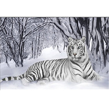DIY Tiger diamond painting animal dimaond embroidery full tiger mosaic round drill black white
