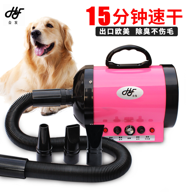Co-hair Pet Cat Dog General High Power Mute Pet Hair Dryer Free Shipping cat power cat power what would the community think