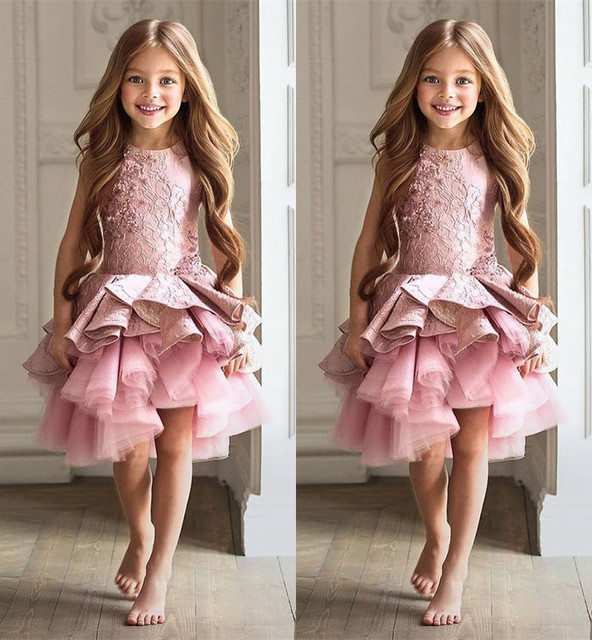 Blush pink flower girl dress lace beaded knee length toddler ...