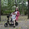 10-zoll elektrische fahrrad faltbare lithium-batterie elektrische fahrrad licht zwei-rädern elektrische fahrrad mit kinder