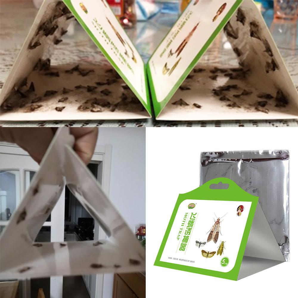 5 Pcs Cloth Pantry Food Moth Trap Pheromone Killer Paste Sticky Glue Trap Pest Reject Fly Insects Family Factory Restaurant Use