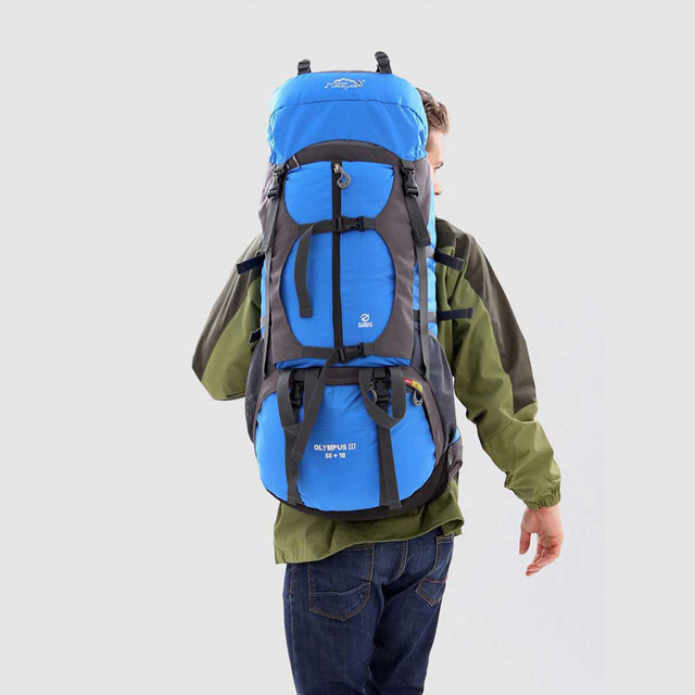 Professional Hiking Backpack Camping Outdoor 65L Travel Bag Field Pack Men and Women Shoulder Rucksack Knapsack Large Capacity