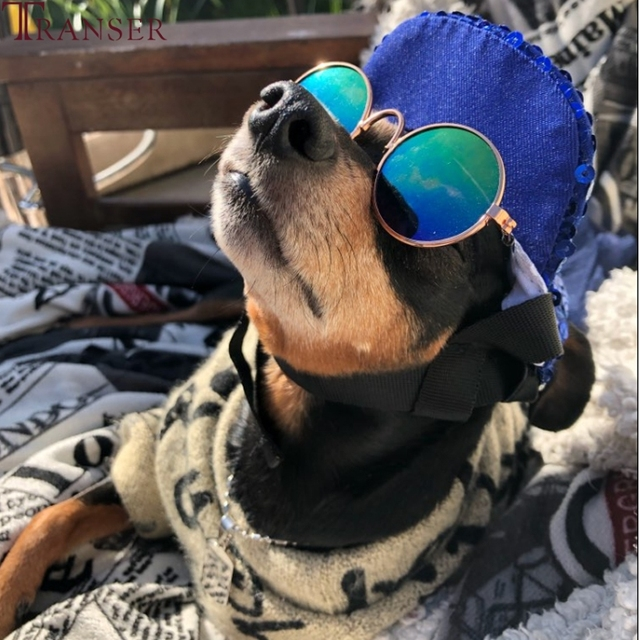 Дешевые ПЭТ товар для кота УФ солнцезащитные очки Cat Eye одежда с зашитой от уход за котом аксессуары 80710