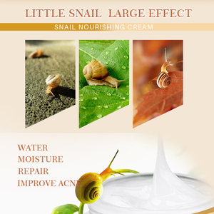 Image 3 - Snail Face Cream with Snail Cream Moisturizing Anti Wrinkle Skin Whitening Cream Hyaluronic Acid Face Serum Freckle Cream EFERO