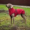 Waterproof Large Dog Jacket