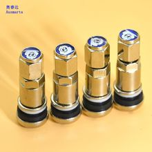 4 Pcs stainless steel explosion-proof valve valve tire general vacuum nozzle valve cap