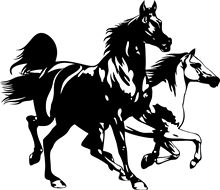 Horse 2 Horses Running Motorcycle SUVs Bumper Car Window Laptop Car Stylings Vinyl Decal Sticker цена