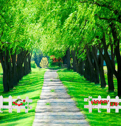 Online get cheap spring outdoor weddings for Cheap green wallpaper