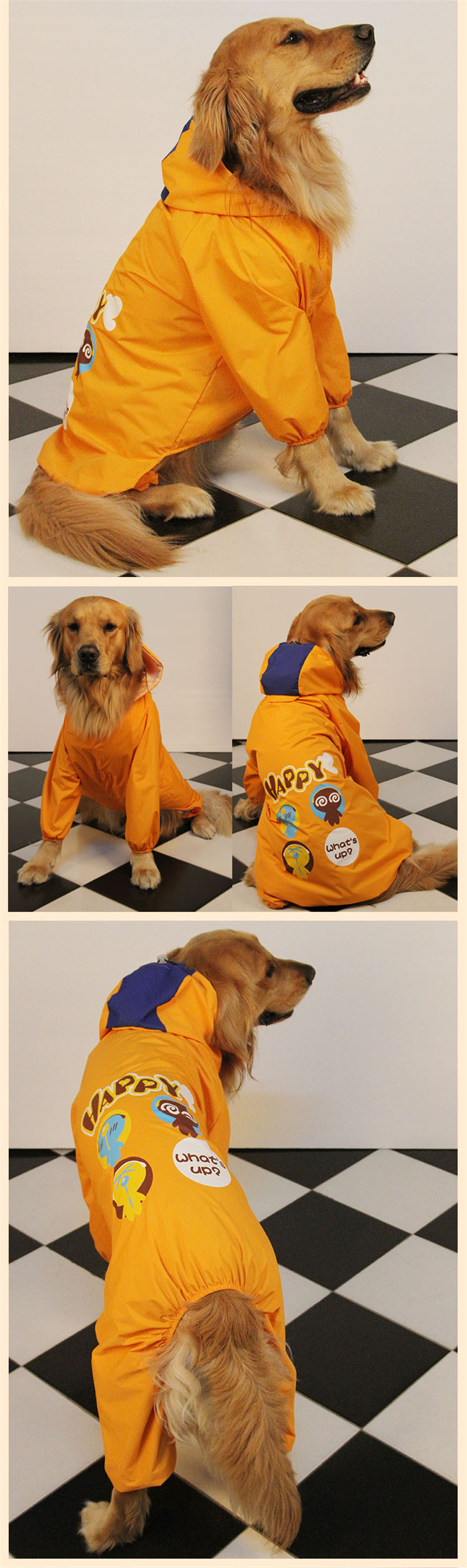 dog raincoat (10)