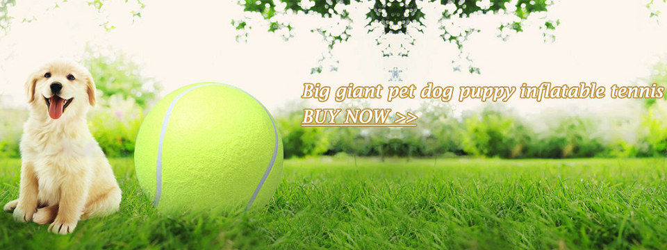 5Pcs Cat Natural Catnip Treat Ball Favor Home Chasing Toys for Cats Healthy Safe Edible Treating Cat Toy Pet Products for Cats