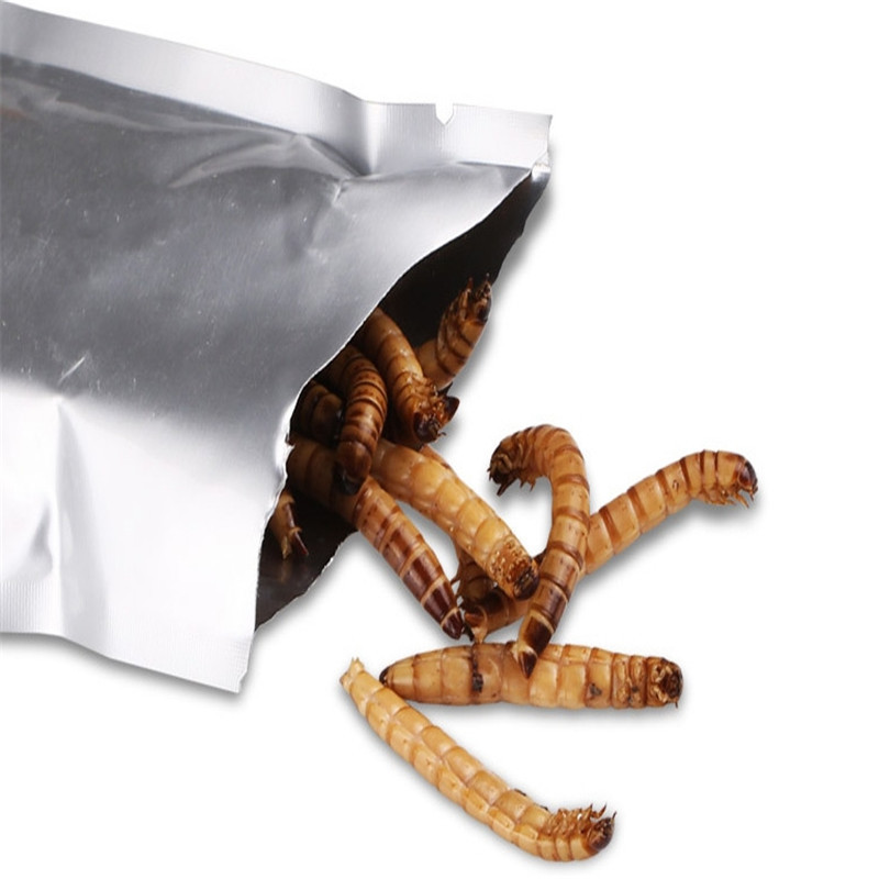 2019 Meal Worm Dried Aquarium Tank Pond Fish Reptile Wild Bird Food Hamster Birdseed Lizard Turtle Arowana Tenebrio Chicken Feed