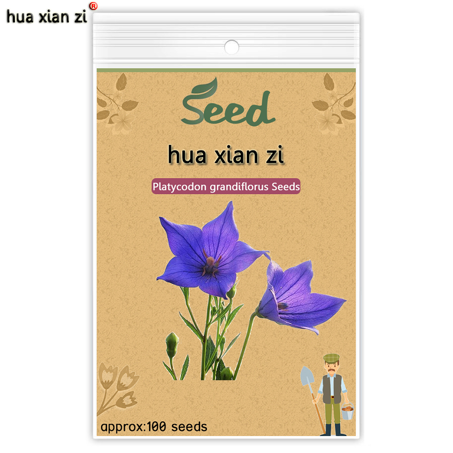 Синий Шар Цветок Platycodon Grandiflorus Семена Бонсай Семена цветов для Дома Сад Растений 100 семена/мешок