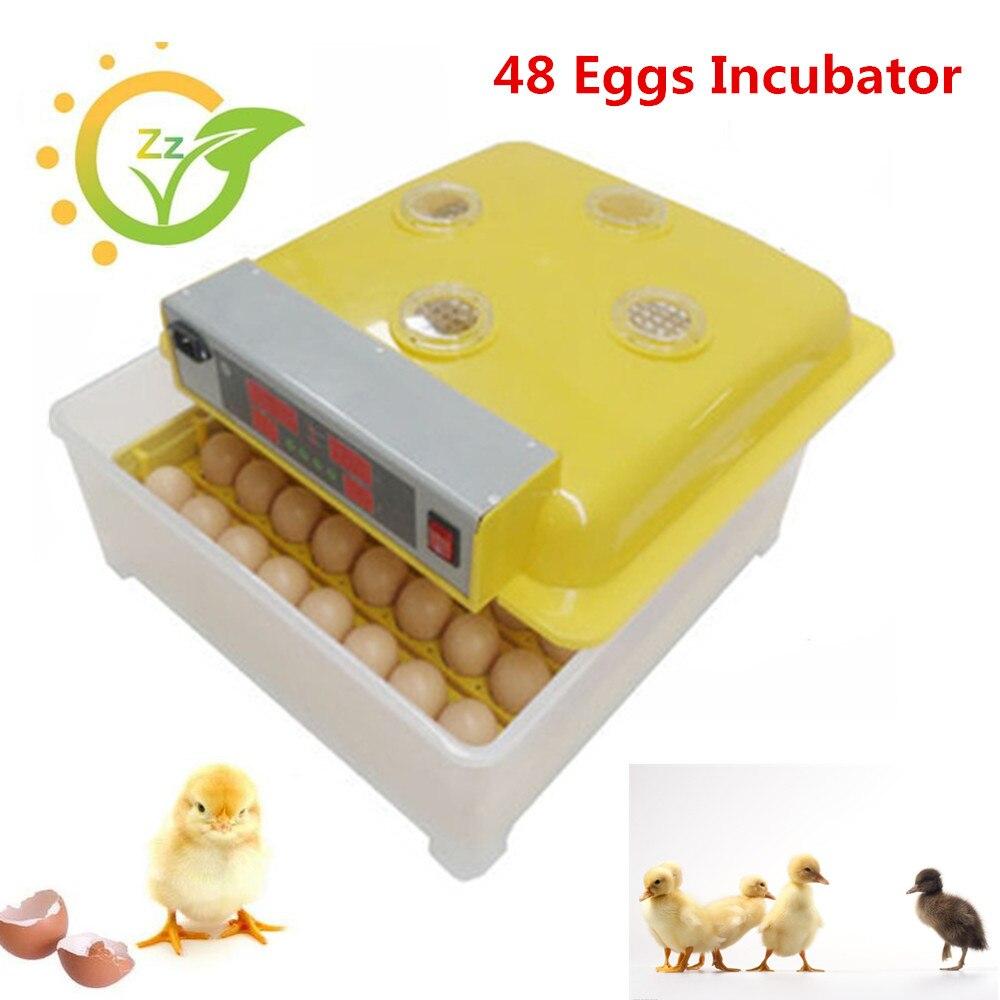 Aliexpress.com : Buy Automatic eggs incubator for chicken ...