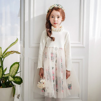YBBWC2005 Girl Long Sleeve Mesh Long Dress