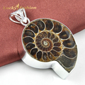 Promotion Gift Ammonite Fossil Siver Plated Wedding Pendant Russia USA Holiday Gift Pendant Australia Pendant Necklace