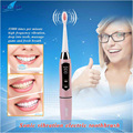 IPX7 Waterproof Battery Operated Adults Smart Sonic Vibration Electric Toothbrush Two brushing modes With Two Replaceable Brush