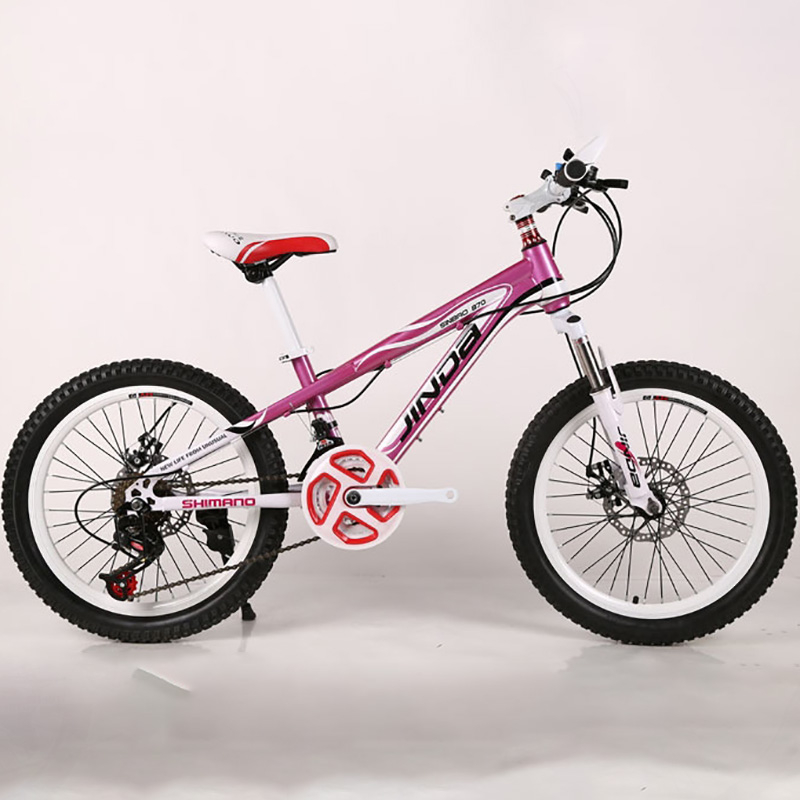 Direct Manufacturers To Supply The New Cycling 20 Inch 21 Speed Frame Type Sports & Entertainment Company Mountain Bike