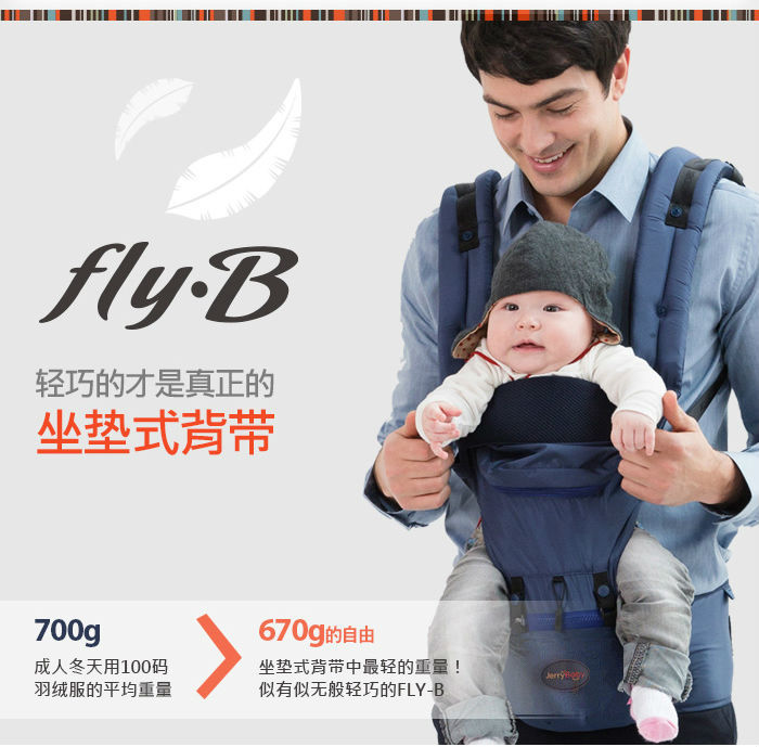 fly b-1_r6_c1
