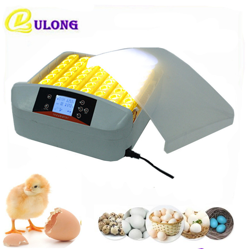 Mini Poultry Incubator Small Automatic Hatcher Chicken Egg Incubator Price Commercial Chicken Brooder Machine chicken egg incubator hatcher 48 automatic mini parrot egg incubators hatcher hatching machines