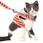 Orange/Pink Pet Cat ...